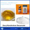 Nandrolone esteróide padrão Decanoate 250mg/Ml da hormona do Bodybuilding PBF