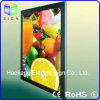 СИД Light Panel для Menu Board Advertizing Display