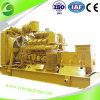 Production d'électricité de générateur de gaz naturel de courant électrique