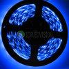 striscia chiara IP20 IP65 IP68 di 60LEDs/M SMD5050 LED LED