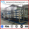 Sistema de la desalación del agua de la central eléctrica
