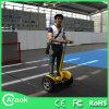 Carro eléctrico de dos ruedas de Ninebot de los nuevos productos