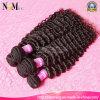 マレーシアのKinky Curly Hair Weave 7A Human Hair Piece (QB-MVRH-DW)