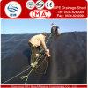 魚のためのはさみ金およびShirmpが池になるように黒いですか透過HDPEの膜、ASTM