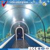 Grande aquário acrílico feito sob encomenda do túnel do tanque de peixes