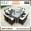 Vimine che pranza il rattan delle parti Furniture/9 che pranza mobilia impostata/vimine che pranza mobilia (SC-A7270)