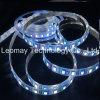 El OEM DC24V de la marca de fábrica impermeabiliza la luz de tira del kit de RGBW 5050SMD LED