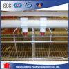 Qualité un type matériel de bâti de batterie de volaille avec la galvanisation