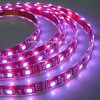 LED RGB 지구 (JY-LST-E60W12-5)