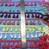 Frangia della nappa di alta qualità per la decorazione dell'indumento