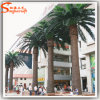 Best Sale Outdoor Decorative Artificial Metal Palm Trees