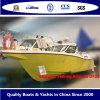 Vissersboot van Bestyear 33 UF33