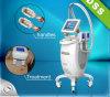 Máquina gorda de Cryotherapy Reducation (FG660L-006)