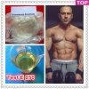 Aceite de Esteroide Inyectable Semi-Terminado Enantato de testosterona 250 Mg / Ml