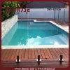 Vetro temperato Pool pannelli di recinzione (DMS-B2806)