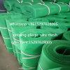 Rete metallica di plastica della maglia di plastica, rete verde