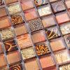 樹脂の組合せのガラスモザイク壁のタイル(L23050)