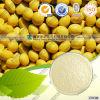 Isolado livre da proteína de soja do Gmo do fornecedor registado FDA
