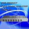 8 passagem do porto 32 SIM CDMA, passagem de Coip, passagem de Coip VoIP (COIP8-32)