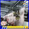 Chaîne de montage d'abattage de porc/machines équipement d'abattoir pour des côtelettes de tranche de bifteck de porc