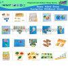 Воспитательное Toy Word Map для Kids (HC-243)