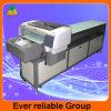 Máquina de impressão de Digitas da placa de metal