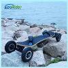 Самокат пинком Ecorider, скейтборд 4 колес раговорного жанра электрический