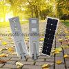 2017 heißer Verkauf kundenspezifisches 30W LED Solarstraßenlaterne