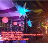 Club Wedding Decoration를 위한 팽창식 Lighting Stars Balloon