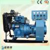 10kw Eenheid van de Generator van het Gas van het Gebruik van mini-watts de Automatisch besturende