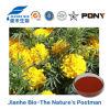 Lutéine de zéaxanthine d'extrait de fleur de souci