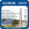 Bombas solares da C.C.  Ímã permanente Motor sem escova da C.C.  O motor é enchido com água Poço solar Pumps-4sp5/8 ()