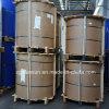 Rivestimento di colore/bobina di alluminio rivestimento del laminatoio per la decorazione o la costruzione