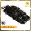 Xuchang 6A Grade New Arrival Factory Price 100%年のPeruvian Virgin Remy Human Hair Natural Wave Weft (TFH-NL0013)