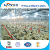 Plein Set Automatic Poultry Equipment pour Broiler Chicken Production