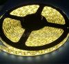 Luce di striscia flessibile di 5050 LED