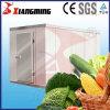 Ambiants, Énergie-Efficient de la chambre froide (FYS-E-11)