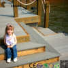 Напольное Wood Composite Decking Stairs для сада (TH-16)