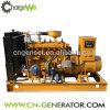 Baixo consumo verde da potência 10-1000kw & no gerador do biogás da instalação do local