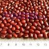 新しい穀物の赤いAdzuki豆PP袋
