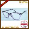 Bâti neuf de la tendance TR avec les lunettes de soleil polaroïd de lentille (TR15009)