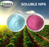 Fertilizante composto solúvel 19-19-19 de NPK