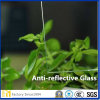 Anti-Glare Aangemaakt Glas voor het Frame van het Beeld