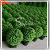 2016 Berufsheißer Großhandelsverkaufs-künstliche Kugel-Pflanzenbonsais
