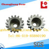 ISO ANSI DIN GB Standard Spur Gear