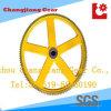 Pittura spruzzo Cina ghisa a doppia catena a rulli corona della ruota