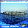 Gabbia di piscicoltura della gabbia dei pesci dell'HDPE per acquicoltura del mare profondo
