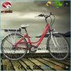 Neues elektrisches Fahrrad der Stadt-250W des Schmutz-E für erwachsenen Roller
