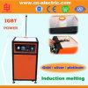 schmelzender Ofen der Miniinduktions-0.5kg/1kg/2kg