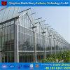 Estufa de vidro hidropónica comercial da Multi-Extensão para a framboesa